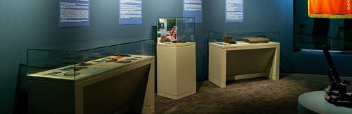12 августа в музее открылась выставка «Минувших лет живая память», посвященная 75-летию Победы