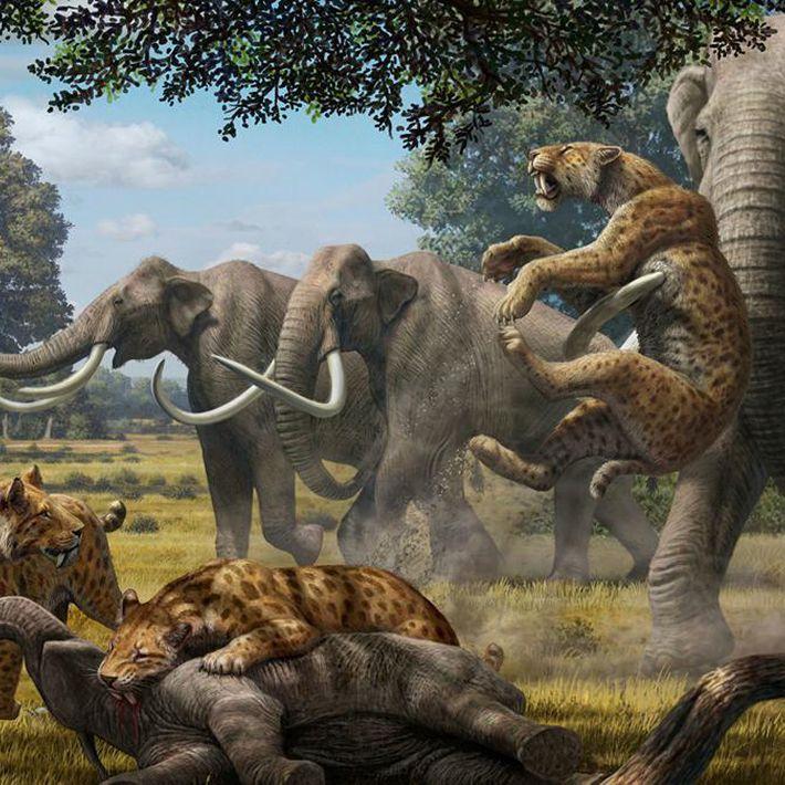 Групповое занятие «Доисторические животные Земли»