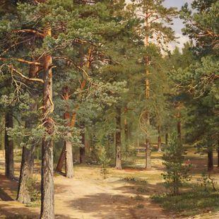 Выставка «Иван Шишкин. К 185-летию со дня рождения»